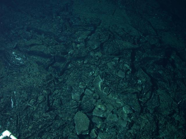 Lava on the floor of the Axial Summit Trough of EPR (2004)