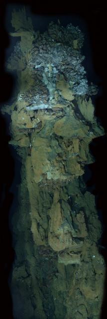 Hydrothermal Vent Photomosaic at Kilo Moana vent field (2005)