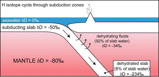 Hydrogen isotope cycling in subduction zones (2008)