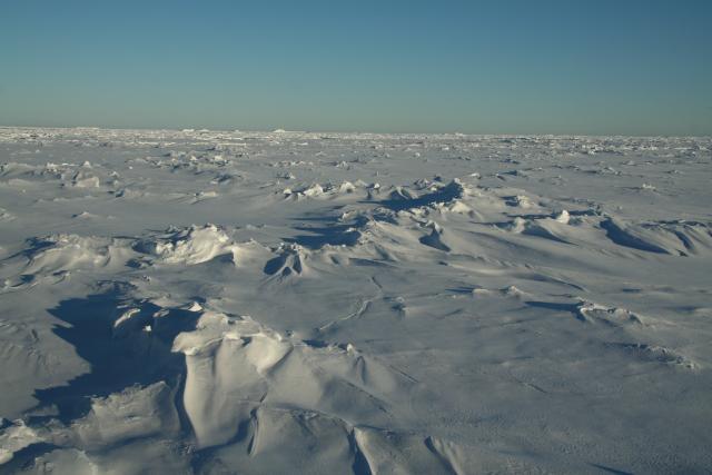 sea ice (2009)