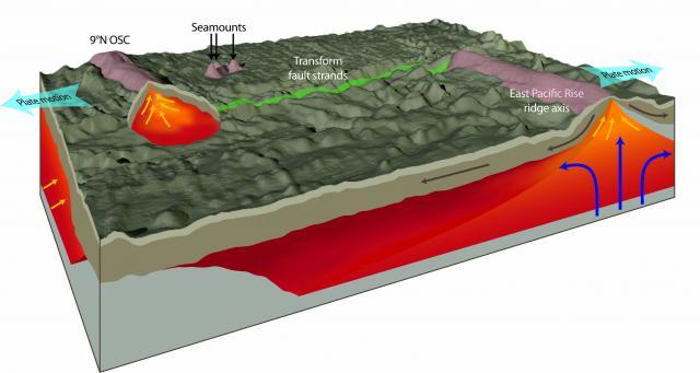 Melt region beneath Siqueiros Transform (2012)