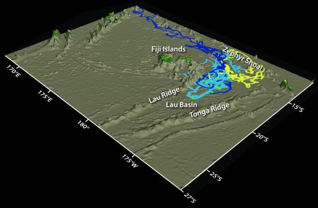 3D trajectories from LAUB-FLEX experiment